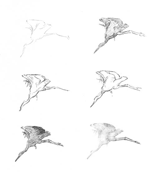 Birds flying away drawing - photo#2
